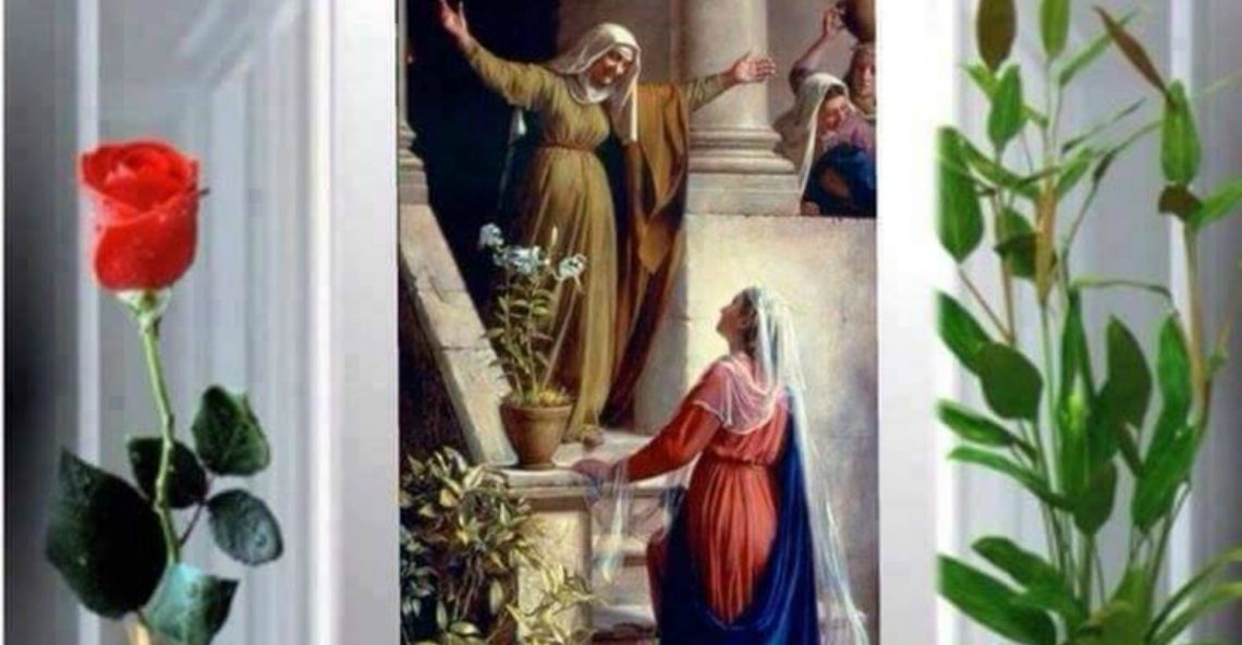 Day 20, 54 Day Christmas Miracle Novena – Kindness