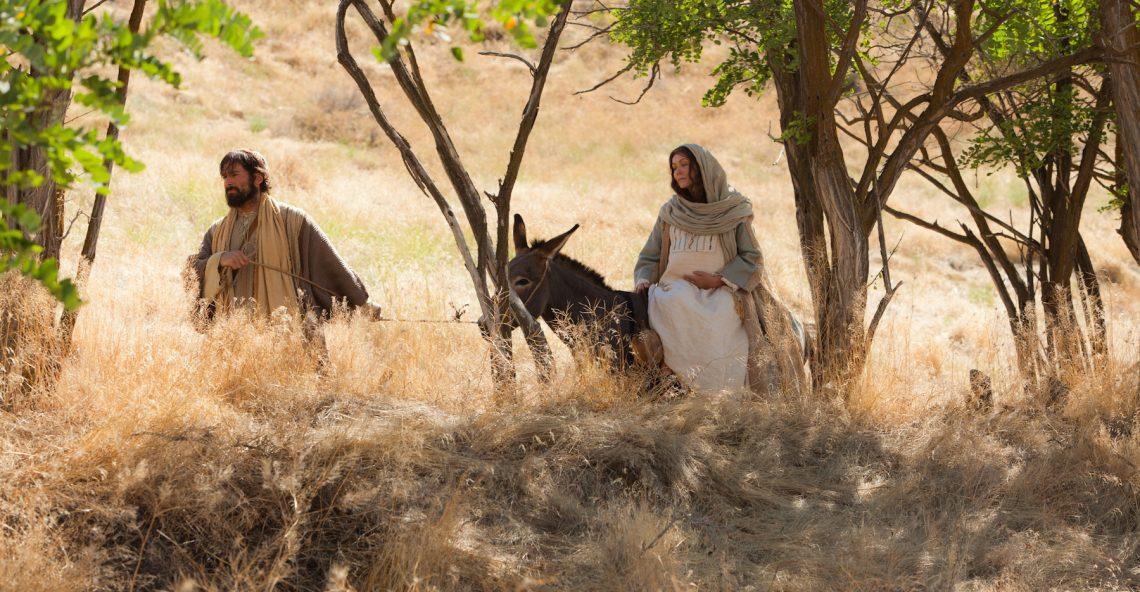 Day 53, 54 Day Christmas Miracle Novena – The Precepts
